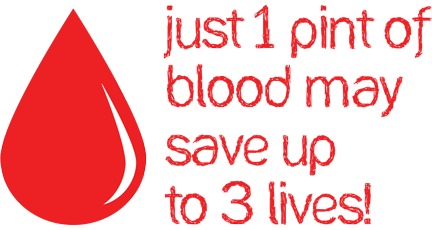 Red Cross Blood Bank Chiang Mai 13